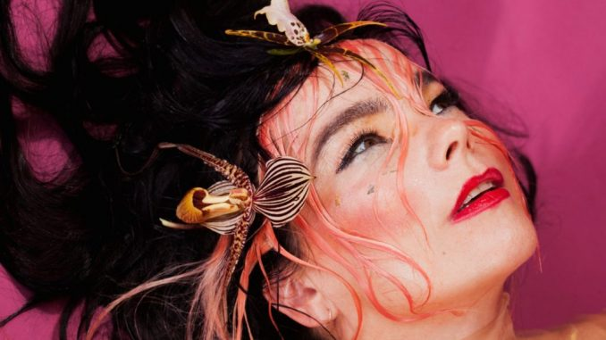 Björk's Wiki: Son, Family, Children, Salary, Spouse, Ethnicity, Dating, Affair
