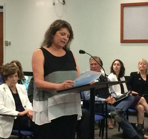Laurie Rich Levinson in a black dress expresses her agenda in front of other members.