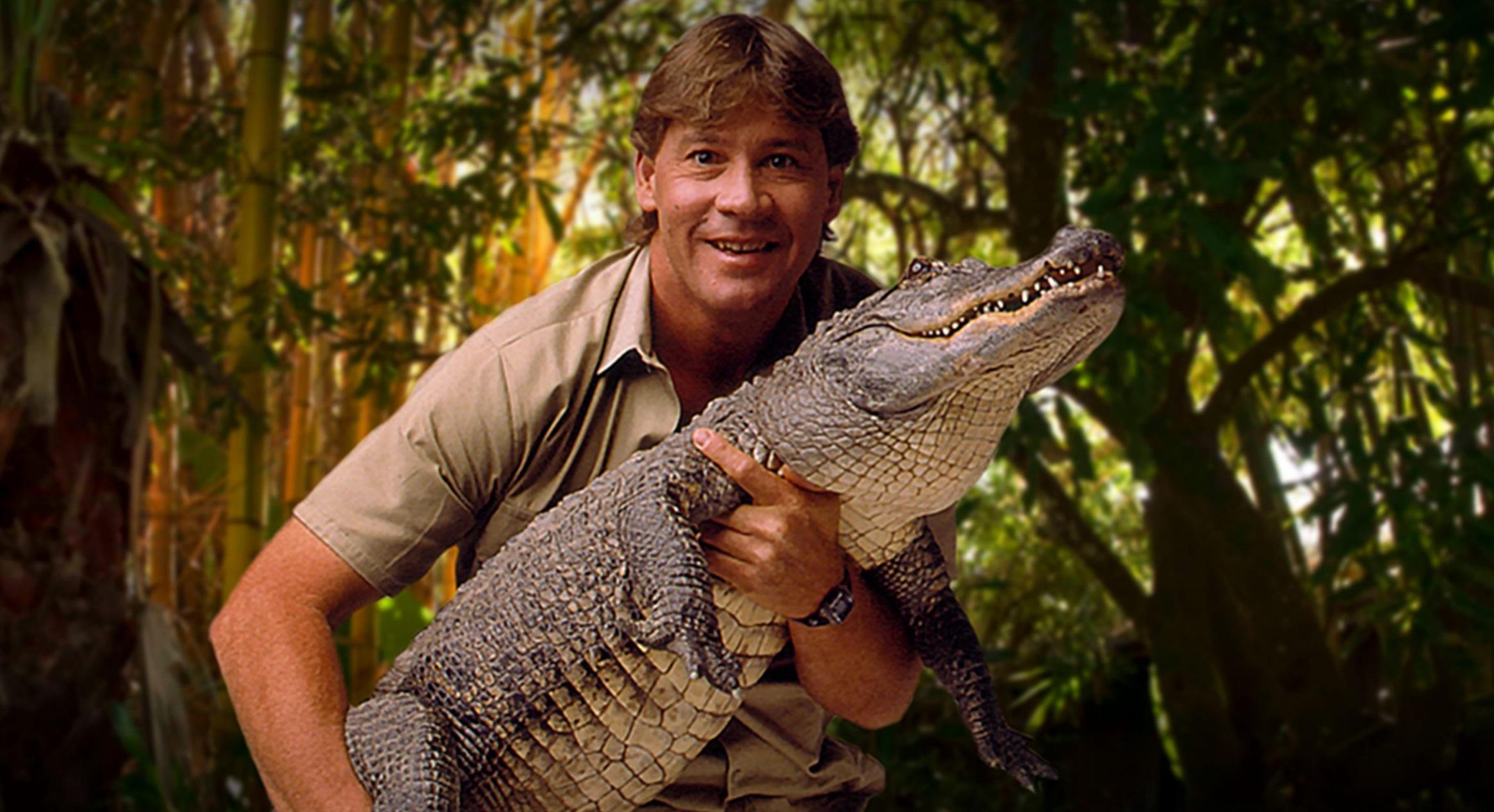 Steve Irwin Career