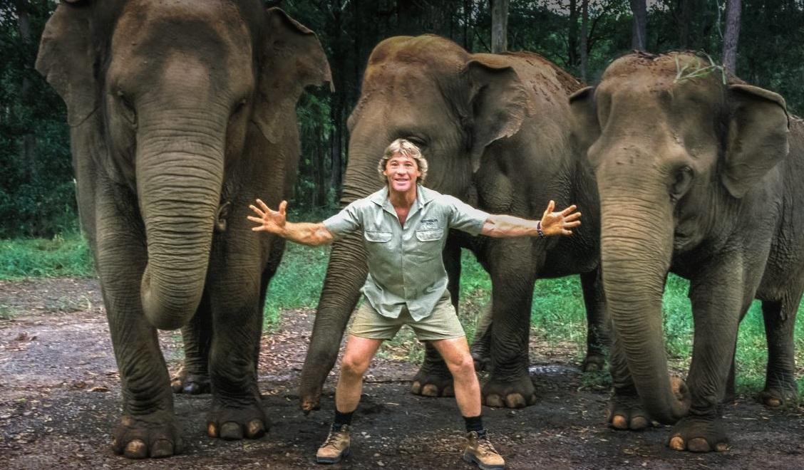 Steve Irwin TV Show