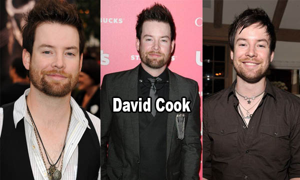 David Cook Net worth, Salary, Houses, Cars, Personal Life and More