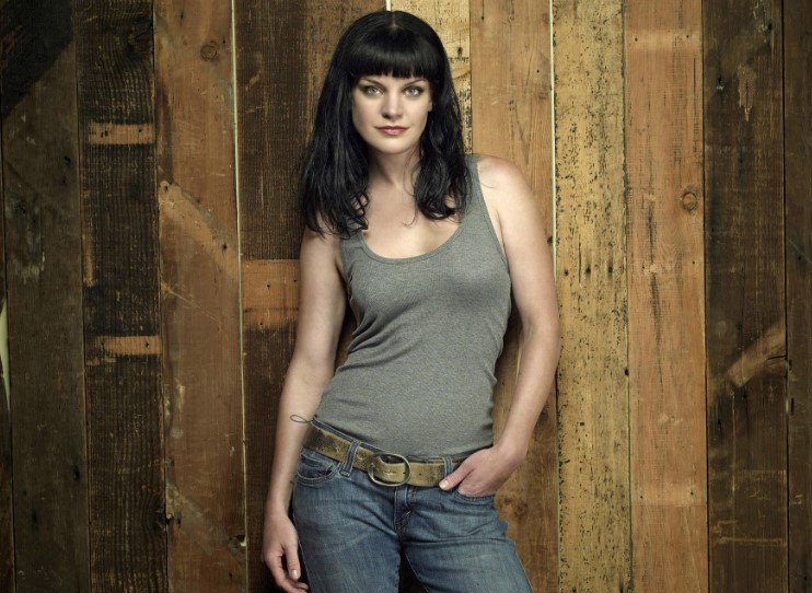Pauley Perrette TV Shows