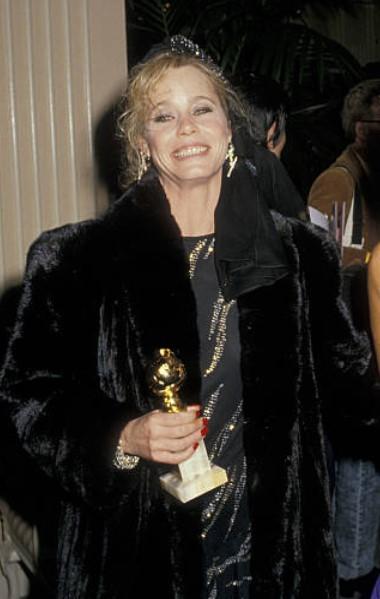 Susan Dey awards