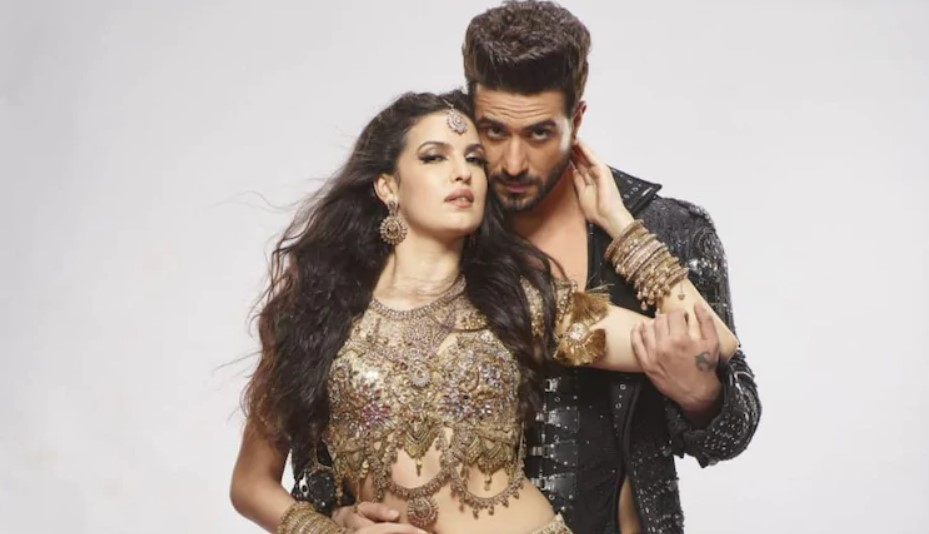 Aly Goni Dating